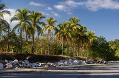Sunny coastline in tropical land Royalty Free Stock Image