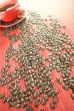 Sunny Coffee Immagine Stock