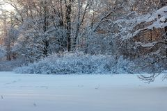 Sunny cold day royalty free stock photos