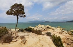Sunny corsican beach Royalty Free Stock Photography