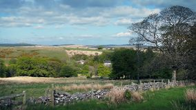 Sunny Countryside With Old Stone Wall stock video