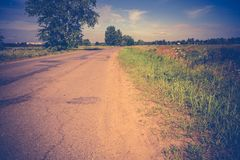 Sunny Cracked Rural Road Filtered. Old cracked, damaged asphalt road in countryside at sunny day, vintage background Royalty Free Stock Photos