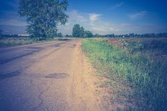 Sunny Cracked Rural Road Filtered. Old cracked, damaged asphalt road in countryside at sunny day, vintage background Royalty Free Stock Photography