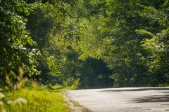 Sunny Cracked Rural Road. Old cracked, damaged asphalt road in countryside at sunny day Royalty Free Stock Photo