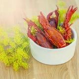 Sunny crayfish Royalty Free Stock Photography