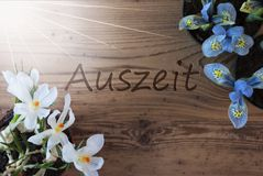 Sunny Crocus And Hyacinth, Auszeit Means Downtime Stock Images