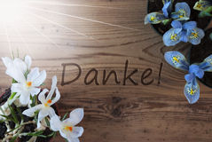 Sunny Crocus And Hyacinth, Danke Means Thank You Stock Image