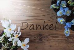 Sunny Crocus And Hyacinth, moyens de Danke vous remercient Image stock
