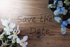 Sunny Crocus And Hyacinth, Text-Abwehr das Datum Lizenzfreie Stockfotografie