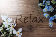 Sunny Crocus And Hyacinth, Text Relax Royalty Free Stock Images