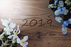 Sunny Crocus And Hyacinth, texte 2019, fond en bois images stock