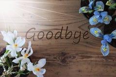 Sunny Crocus And Hyacinth, textotent au revoir, fond en bois images libres de droits