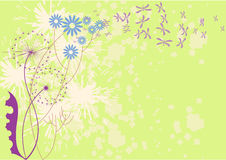 Sunny day. There are flowers, sunspots, and butterflies on a light green background Royalty Free Stock Photos