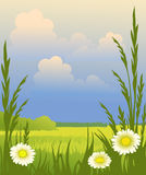 Sunny day. Spring sunny landscape with flowers Stock Photos