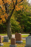 Sunny day. Autumn sunny day in the cemetery Royalty Free Stock Image