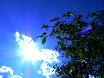 Sunny day. In the sky clouds and bright sun Royalty Free Stock Photo