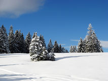 Sunny day in alps Stock Photos