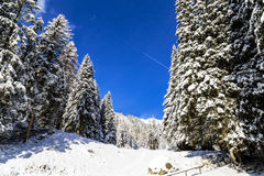Sunny day in the alps after the snowfall Stock Images