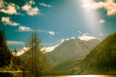 Sunny day in the alps after the snowfall Royalty Free Stock Image