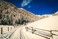 Sunny day in the alps after the snowfall Royalty Free Stock Images