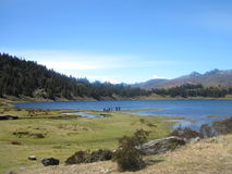 Sunny Day in the Andes. Lake Mucubaji in the Venezuelan Andes, Merida state royalty free stock images