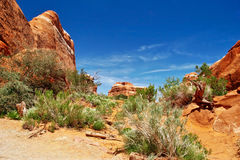 Sunny day in Arches Canyon Royalty Free Stock Photo