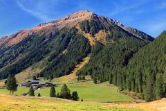 Sunny day in the Austrian Alps Royalty Free Stock Image