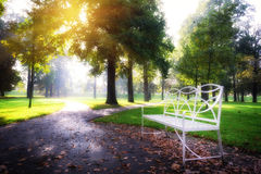 Sunny day at autumn city park Royalty Free Stock Images