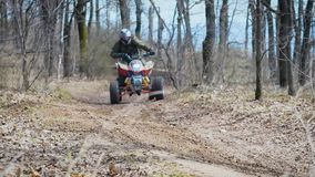 Sunny day in the autumn wood. The racer leaves from abrupt turn on the quad bike. The man passes on forest off road stock video