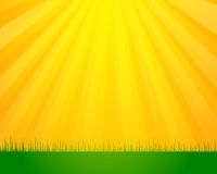 Sunny day background Stock Image