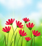 Sunny Day background Stock Photography
