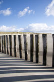 Sunny day at baltic sea. Wooden groynes at beach of baltic sea Stock Images