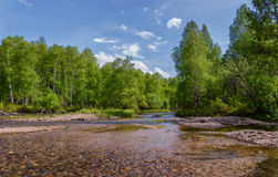 Sunny day. Sunny day on the banks of a small river in the foothills of the Kuznetsk Alatau. Khakassia. Siberia Royalty Free Stock Photos