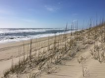 A sunny day at the beach. Driving on the beach in the Outer Banks leaves tracks in the sand. It`s a sunny day and the waves are rolling in royalty free stock photography