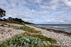 A sunny day on the beach on Mols, Denmark Stock Image