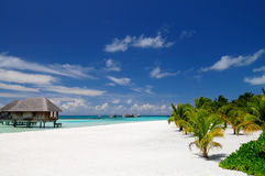 Sunny day on the beach. At one tropical resort in Maldives stock images