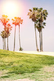 Sunny day on the beach of Venice, California. Background. Royalty Free Stock Images