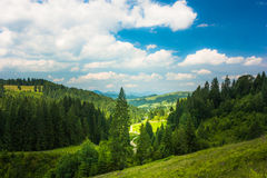 Sunny day. In the beautiful hills Stock Image