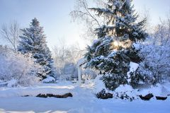 Sunny day after blizzard Royalty Free Stock Photo