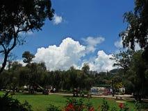 Sunny Day in Burnham Park Royalty-vrije Stock Afbeeldingen