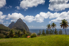 Sunny day on the Caribbean tropical island of St Lucia, with pal Stock Photography