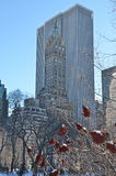 Sunny day in Central Park. New York. Sunny day in Central Park. Manhattan. New York. USA Stock Photo