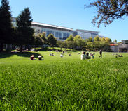 Sunny day in a city. People enjoying a sunny day in the park of San francisco Stock Images