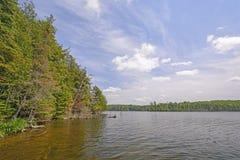 Sunny Day dans les bois du nord Photographie stock