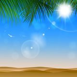 Sunny day at Desert. Shiny desert tropical background with palms and sunny blurs Stock Images