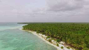 Sunny day on a deserted beach among palm forest view quadrocopters. In slow-motion stock video