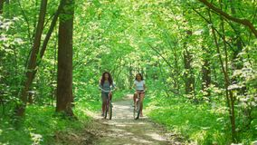 Sunny day in the forest two girls ride on the path on bicycles and communicate. Telephoto shot stock video footage