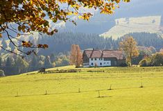 Sunny day in Germany Royalty Free Stock Photo