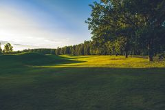 Sunny day at golf course stock photos