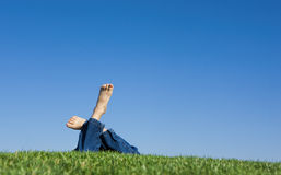 Sunny day in the grass. Stock Photography